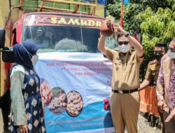 Bupati Barru Launching Pengiriman Kacang Tanah Dari Petani Kec. Tanete Riaja Kab. Barru ke KIMA Makassar
